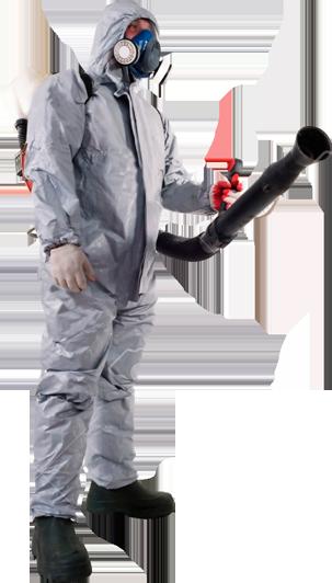 Empresa control de plagas Madrid